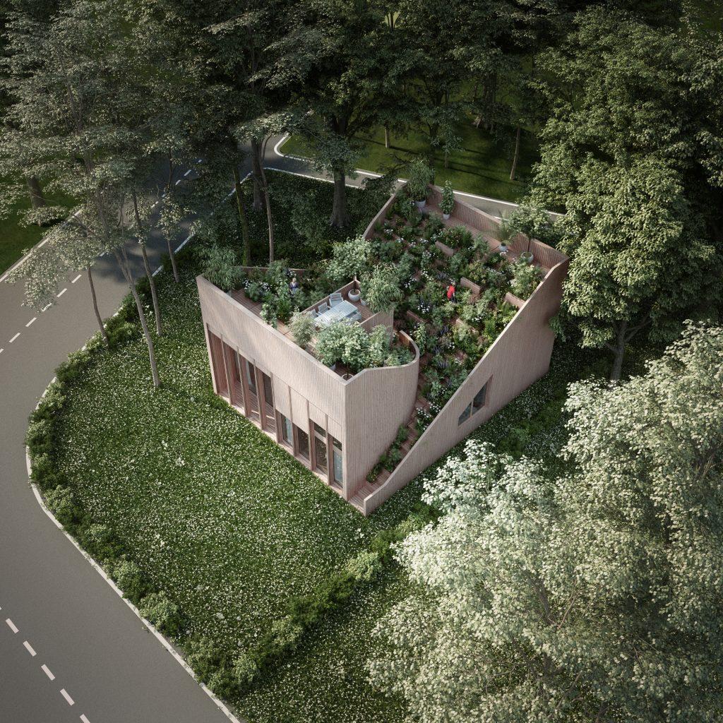 تحلیل خانه یین و یانگ