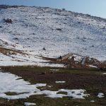 تحلیل روستای خواجه مرجان